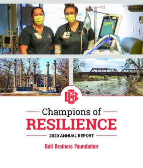Champions of Resilience: 2020 Annual Report