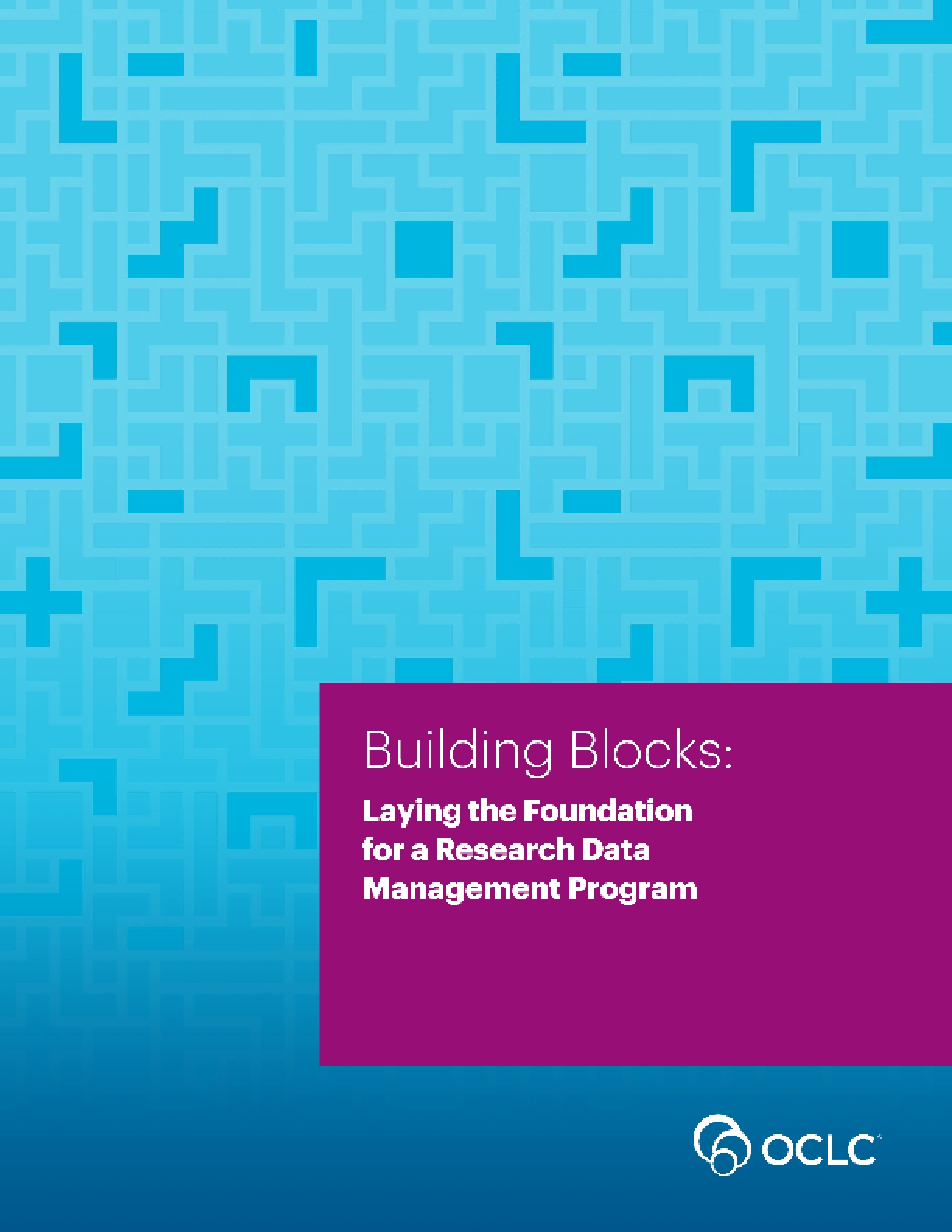 Building Blocks: Laying the Foundation for a Research Data Management Program