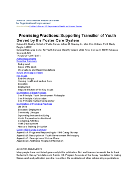 Promising Practices: Supporting Transition of Youth Served by the Foster Care System