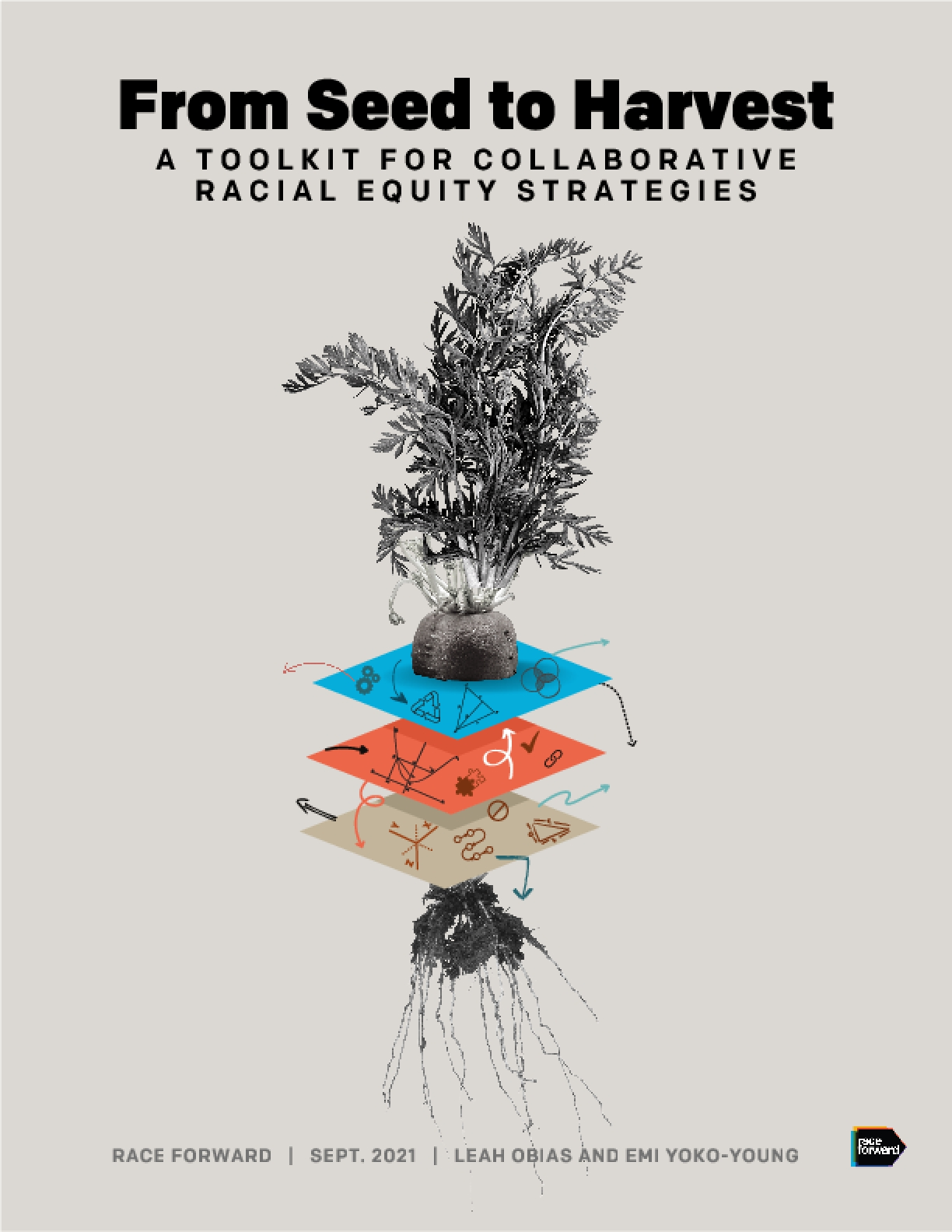 From Seed to Harvest: A Toolkit for Collaborative Racial Equity Strategies