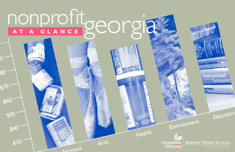 Nonprofit Georgia At a Glance