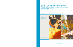 Paths Forward for the Global Water, Sanitation, and Hygiene (WASH) Sector