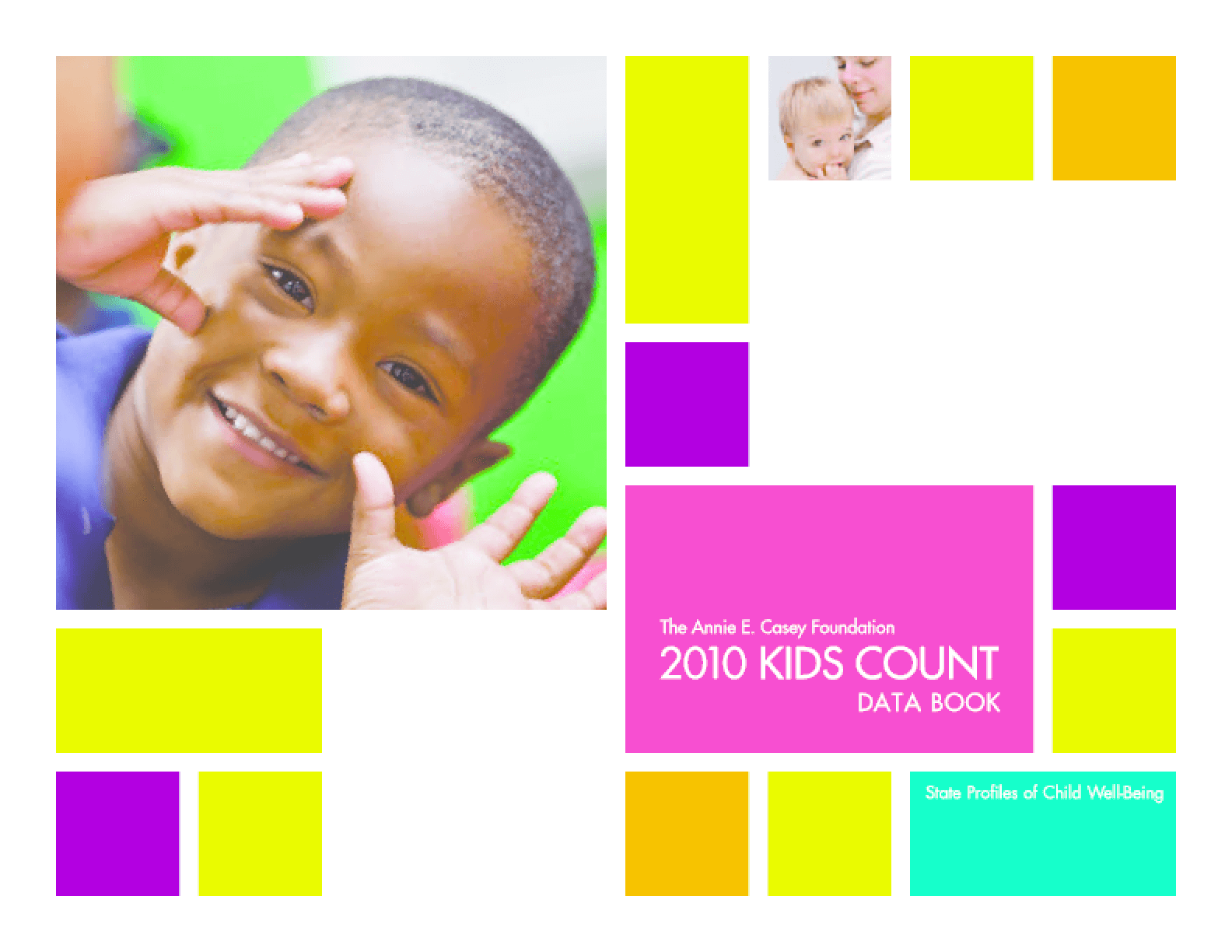 2010 KIDS COUNT Data Book