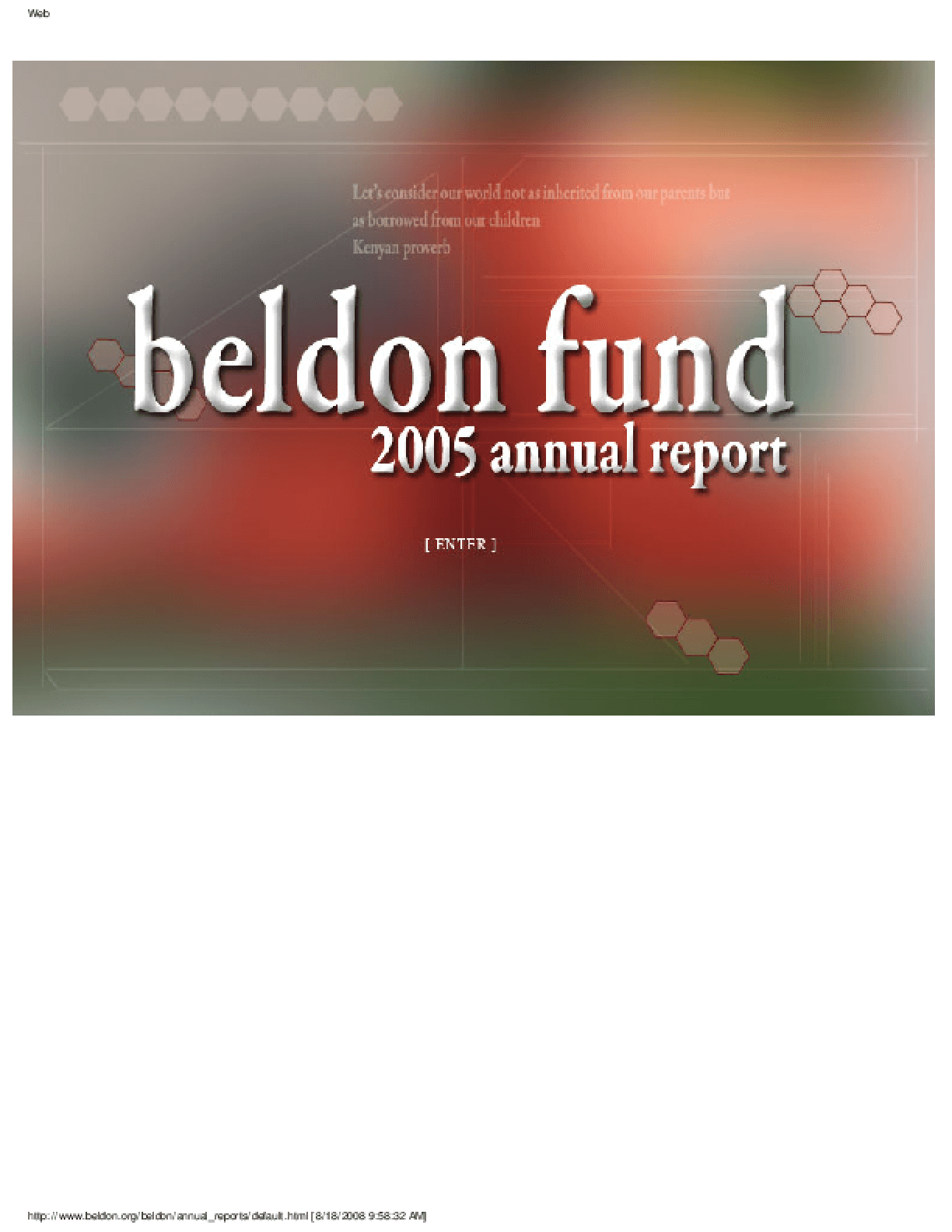 Beldon Fund - 2005 Annual Report