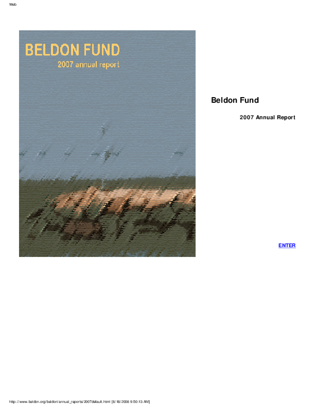 Beldon Fund - 2007 Annual Report