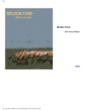 Beldon Fund - 2007 Annual Report