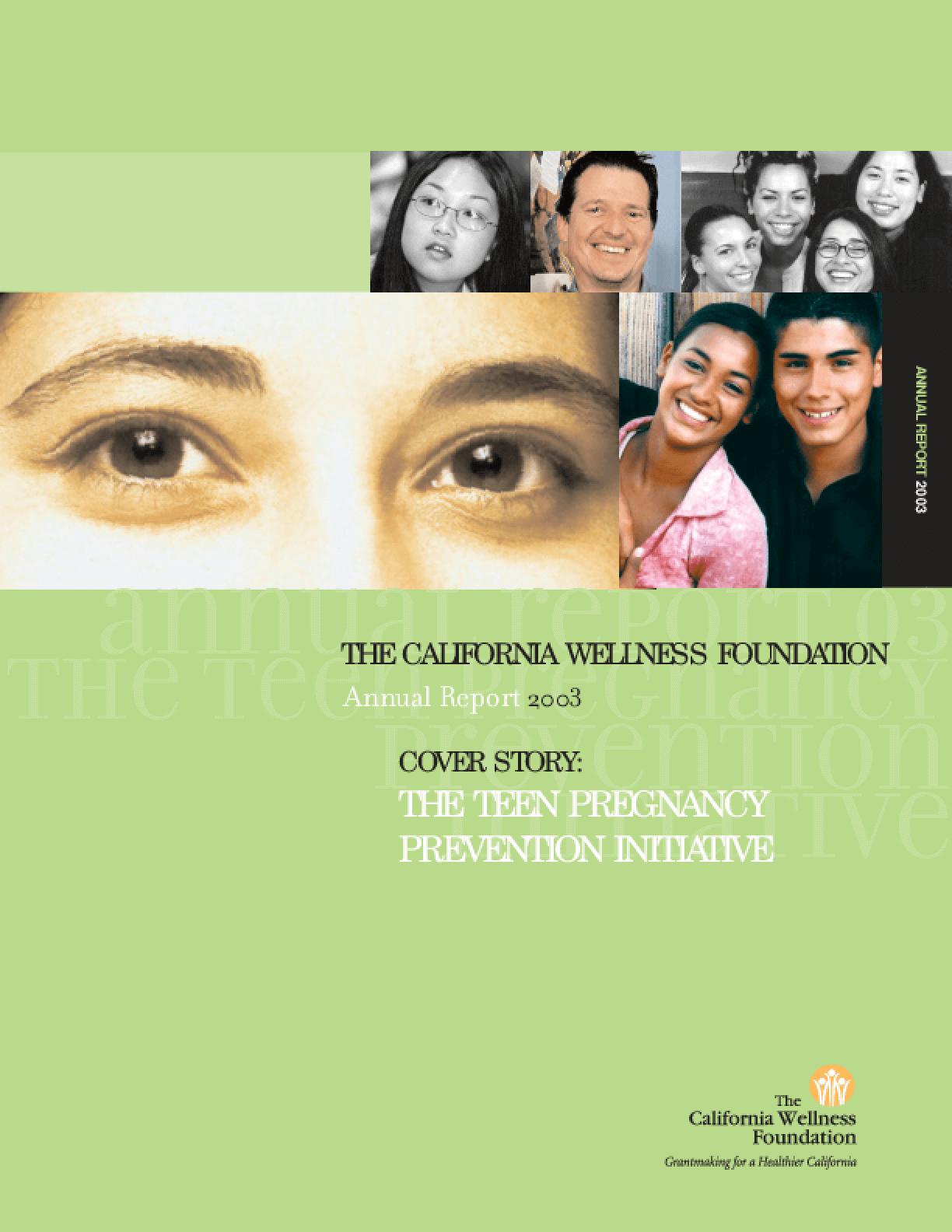 California Wellness Foundation - 2003 Annual Report