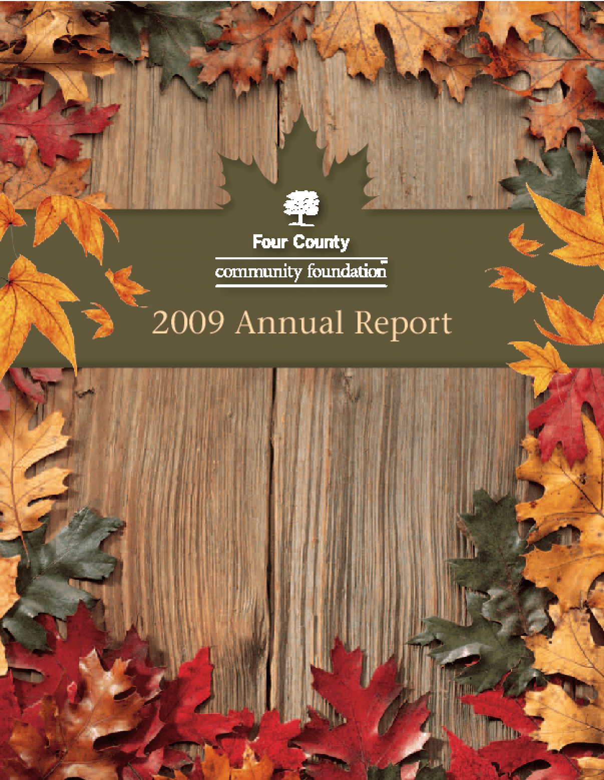 Four County Community Foundation - 2009 Annual Report
