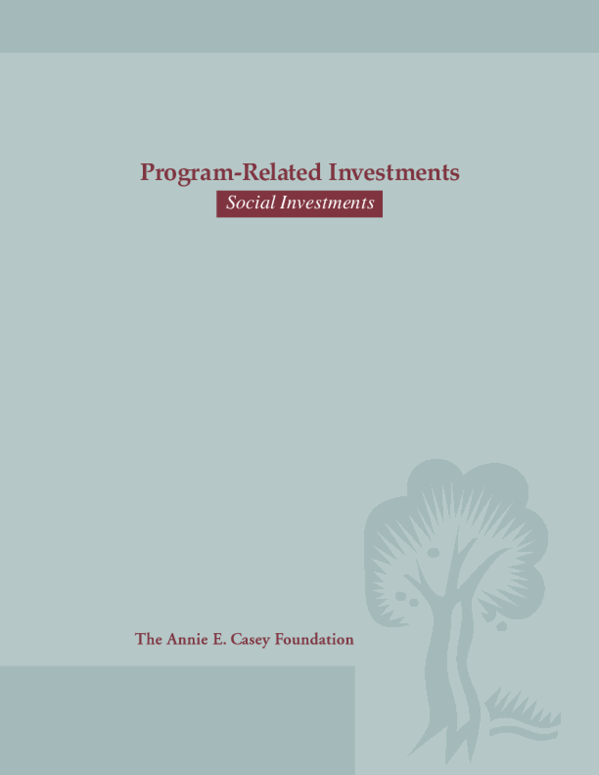 Program-Related Investments: Social Investments