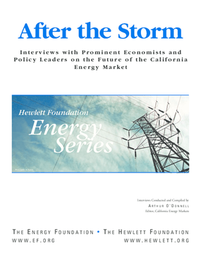 After the Storm: Interviews With Prominent Economists and Policy Leaders on the Future of the California Energy Market