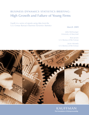 Business Dynamics Statistics Briefing: High Growth and Failure of Young Firms
