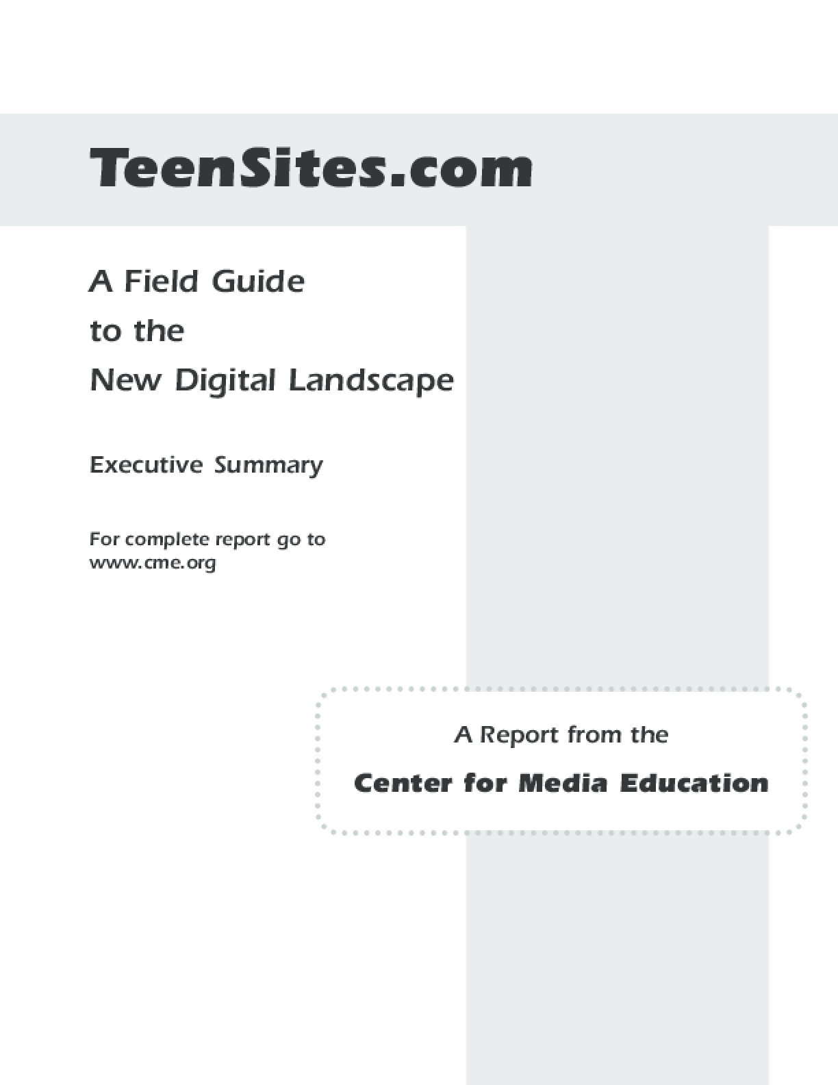 Teensites.com: A Field Guide to the New Digital Landscape