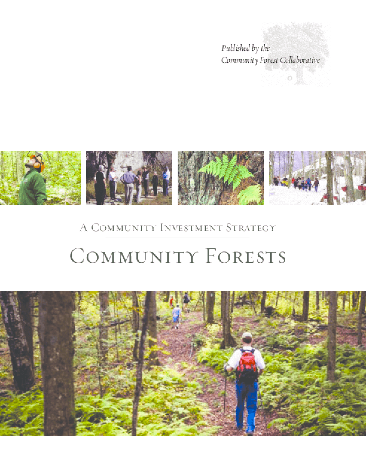 Community Forests: A Community Investment Strategy