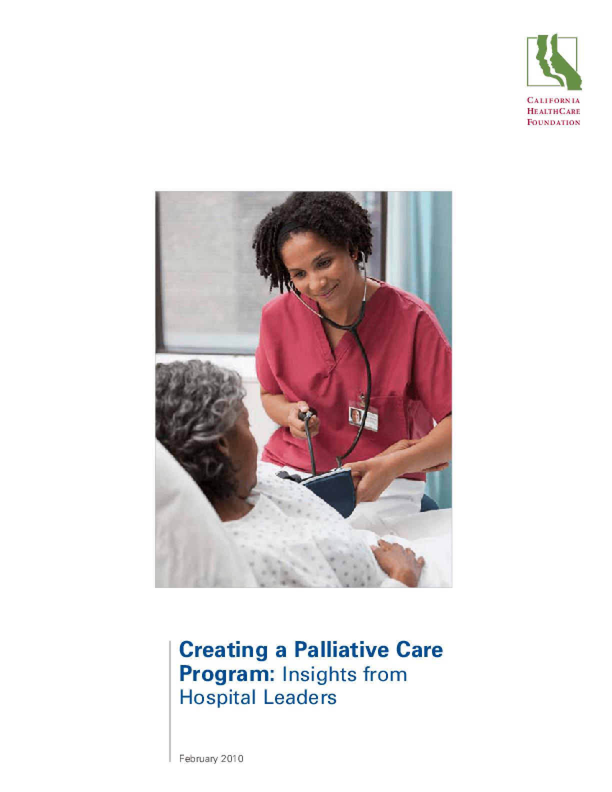 Creating a Palliative Care Program: Insights From Hospital Leaders