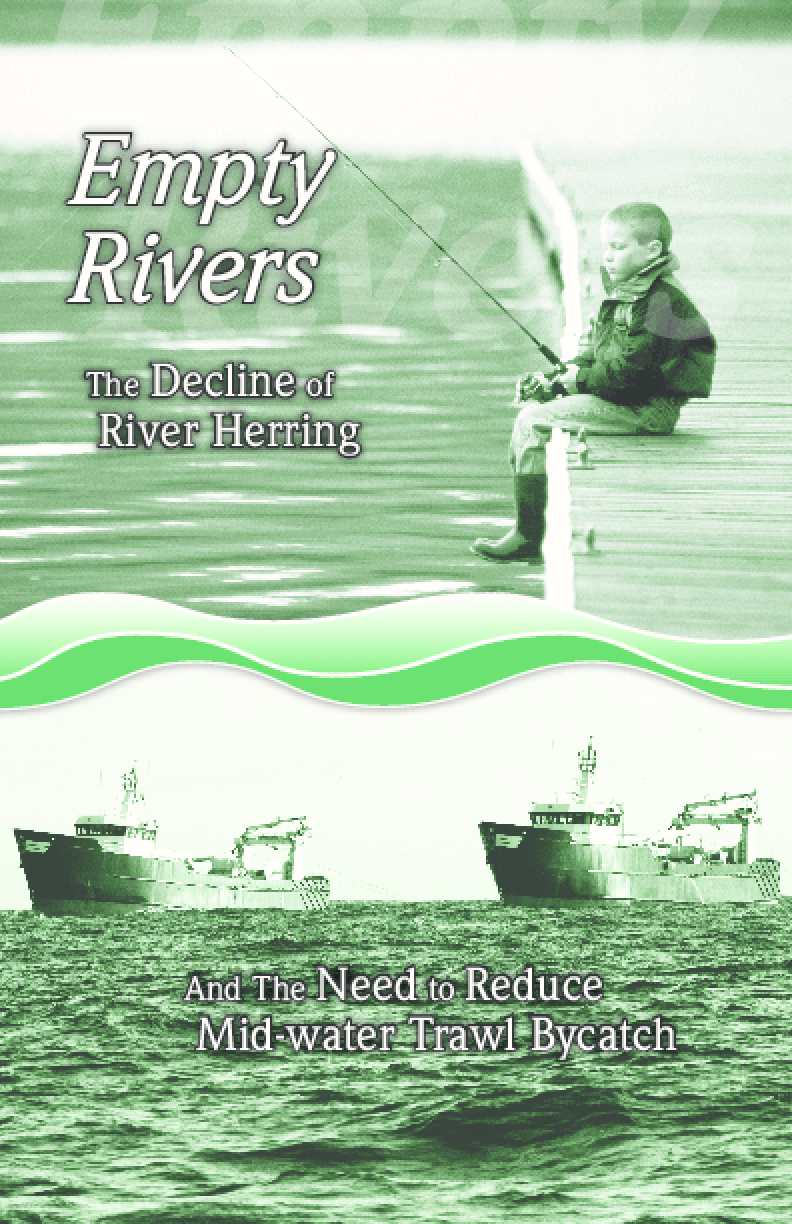 Empty Rivers: The Decline of River Herring and the Need to Reduce Mid-Water Trawl Bycatch