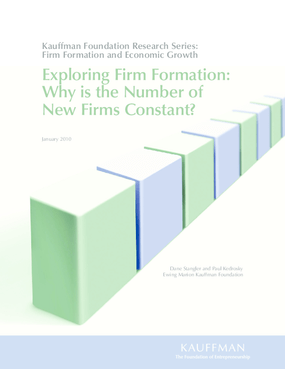 Exploring Firm Formation: Why Is the Number of New Firms Constant?