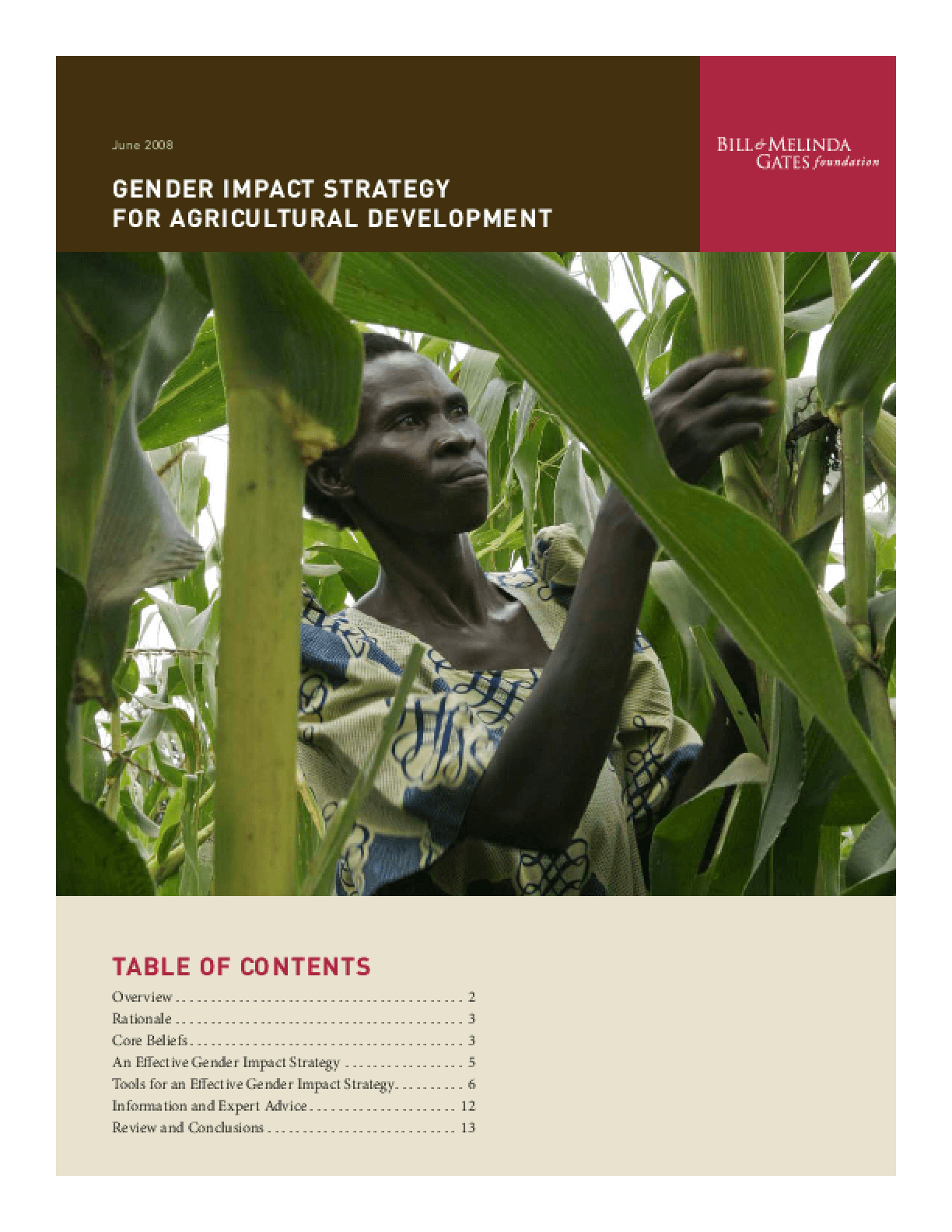 Gender Impact Strategy for Agricultural Development