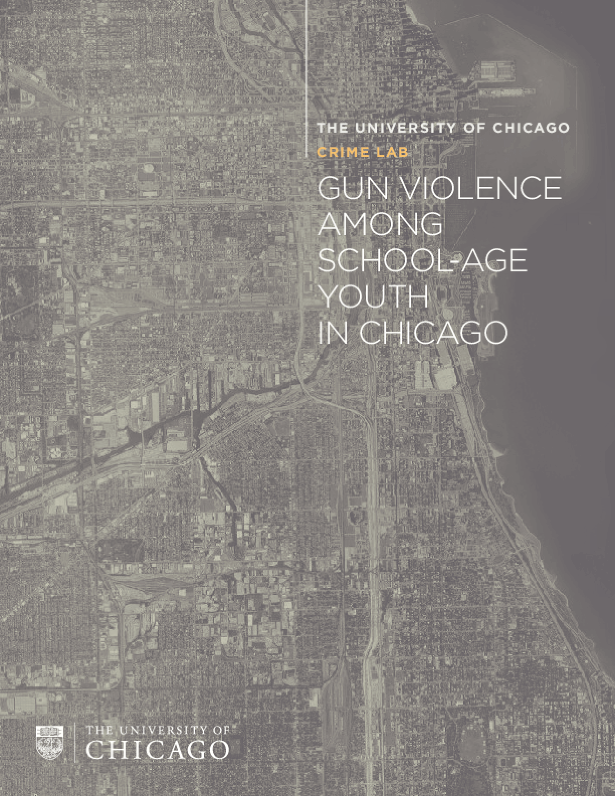 Gun Violence Among School-Age Youth in Chicago