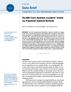 Health Care Opinion Leaders' Views on Payment System Reform