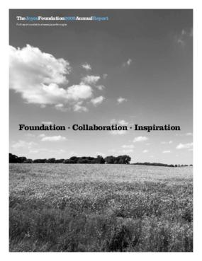 Joyce Foundation - 2009 Annual Report: Foundation + Collaboration + Inspiration